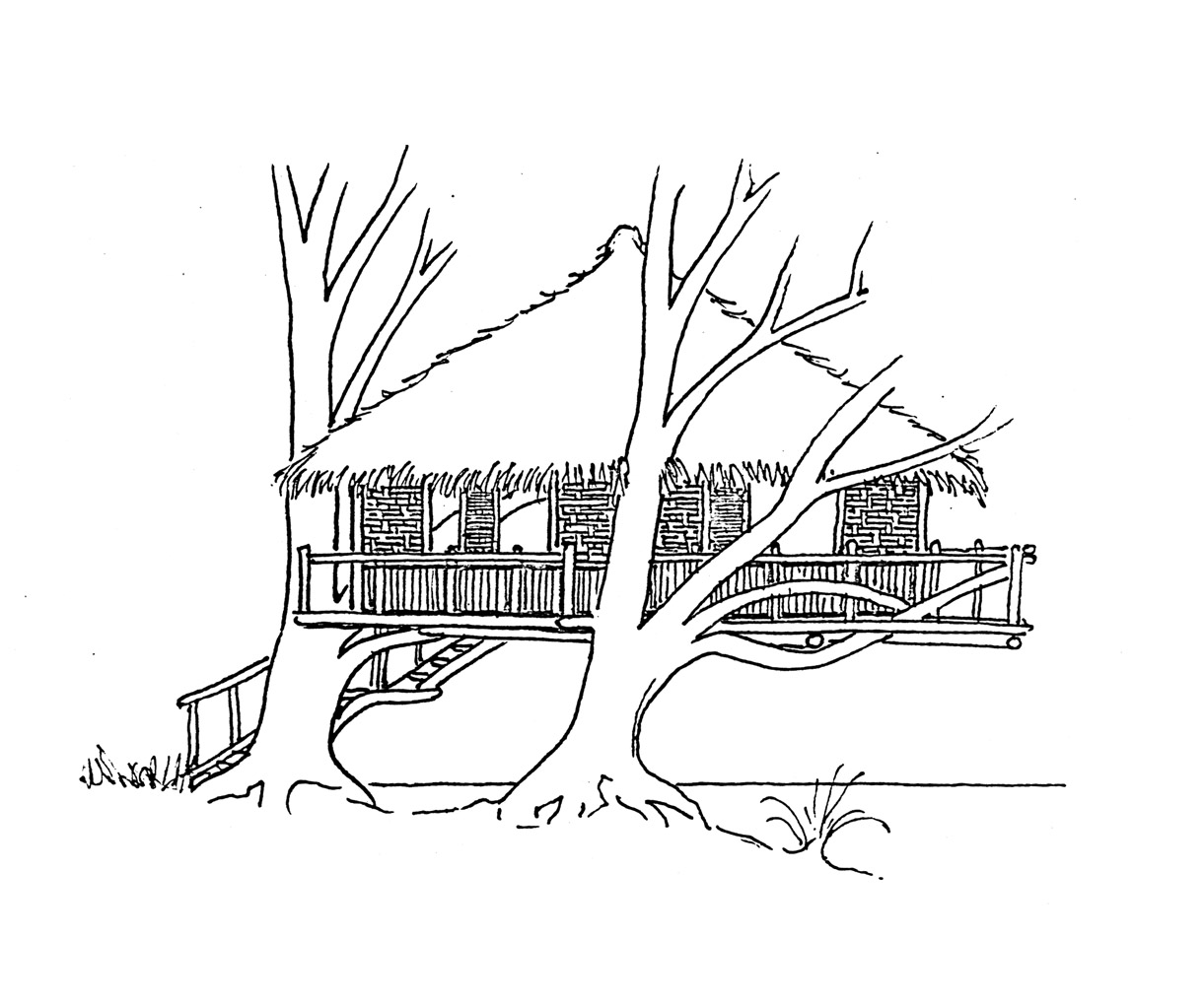Free Coloring Pages Of Tree House Treehouse Coloring Pages